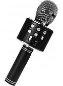 Микрофон Wster WS-858 (черный)