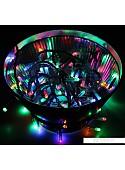 Гирлянда Neon-night Твинкл Лайт 6 м [303-119]