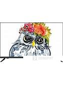 Телевизор JVC LT-43M695
